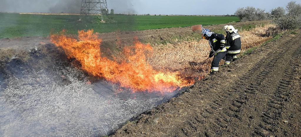 Szabadtéri tüzek aloldal fejlécképe